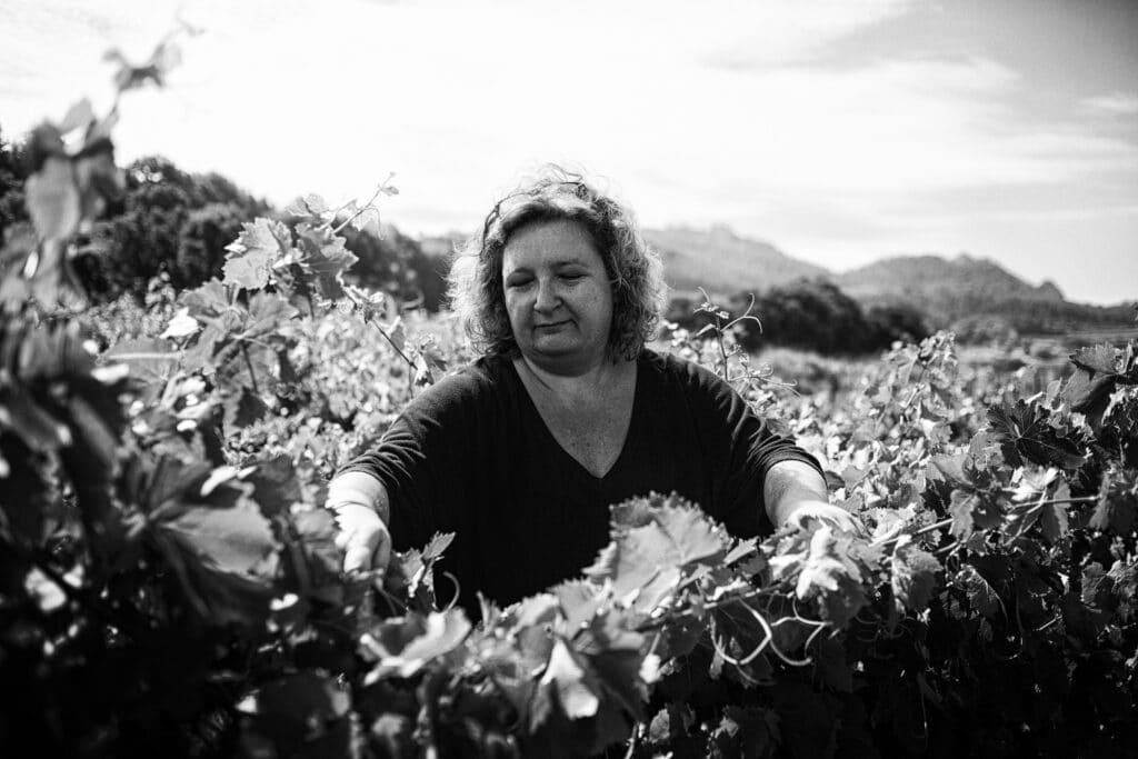 photographe à avignon, reportage photo pour les domaines viticoles